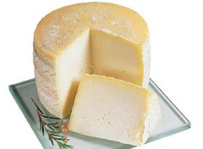 ¿Cuáles son las propiedades del queso?